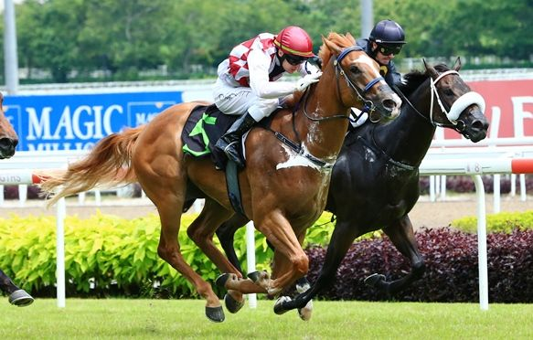 EMPEROR JONES Sunspeed-bred chestnut wins on debut at Kranji
