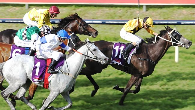 Race 8 Ascot TABTOUCH-KINGSTON TOWN CLASSIC 1800m (group1) Winner number 11 Ihtsahymn