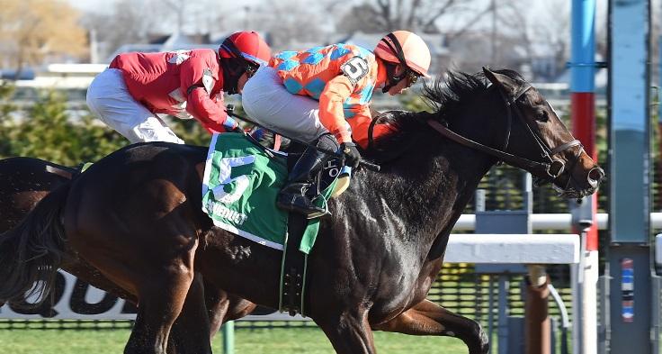 frosty margarita wins fifth avenue resize