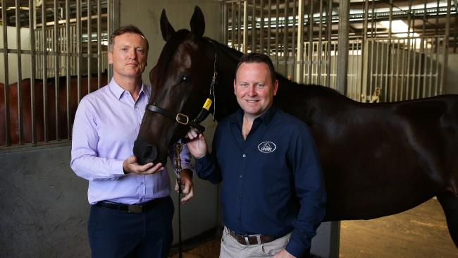Yankee Rose pictured with trainer David Vandyke and owner Scott Darby