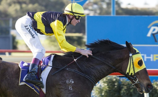 Young Lionel wins at Belmont Park on August 15 Picture: Sharyn Walker Western Racepix