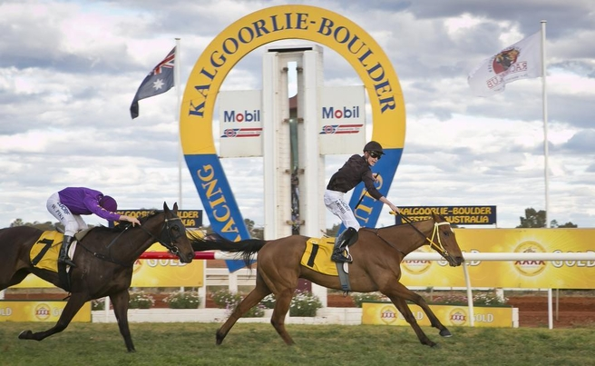 Cougar claims Kalgoorlie Cup | TBWA