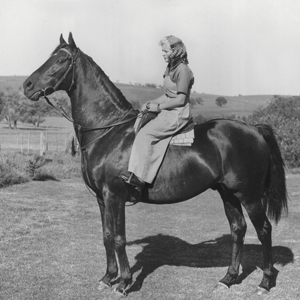 CAMERHAIR<Champion stallion pictured with Mary John at Cheriton Stud