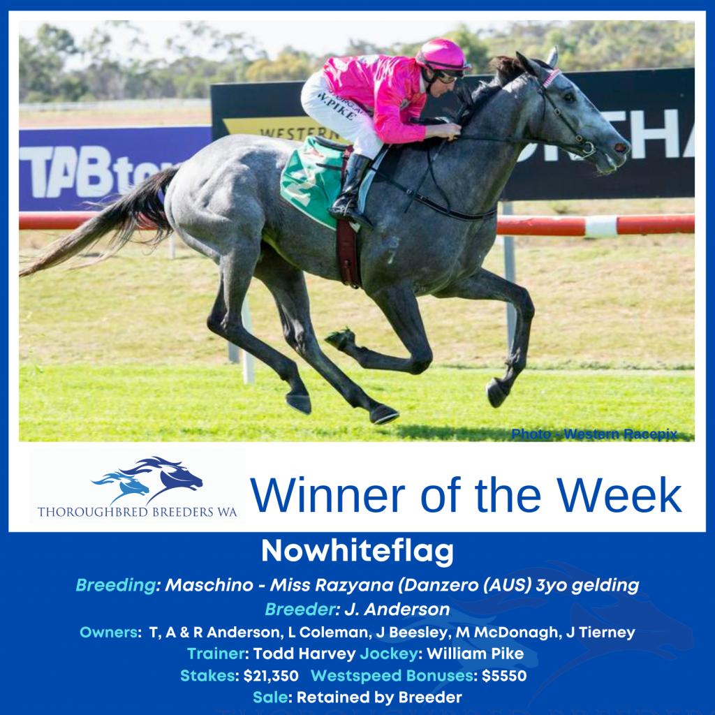 TBWA Winner of the Week – Nowhiteflag